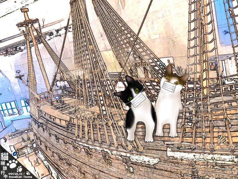 貓咪旅行中 斯德哥爾摩 口罩貓